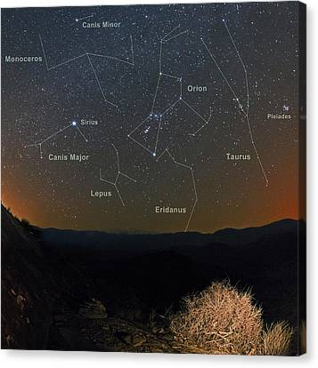 Monoceros Canvas Print - Winter Night Sky by Babak Tafreshi