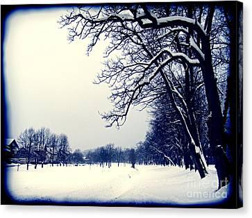 Winter Canvas Print by Nina Ficur Feenan