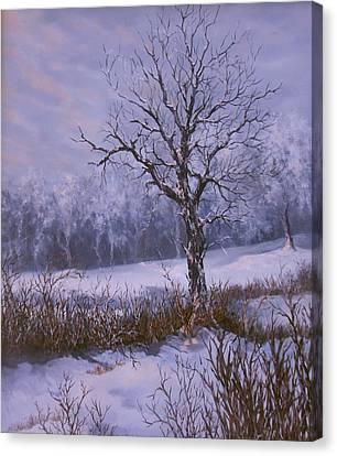 Winter Slumber Canvas Print