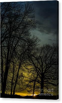 Winter Solstice Sunrise Canvas Print