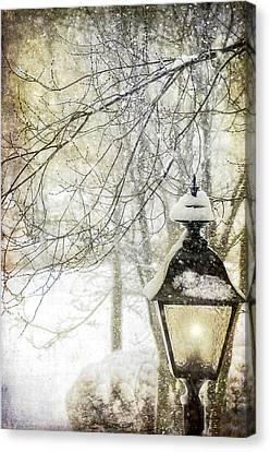 Winter Stillness Canvas Print by Julie Palencia