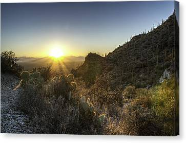 Canvas Print featuring the photograph Winter Sunset by Lynn Geoffroy