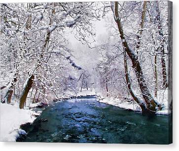 Winter White Canvas Print by Jessica Jenney