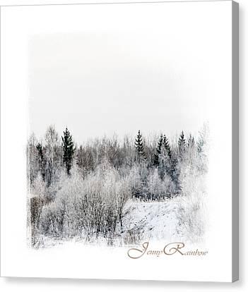 Winter Wonderland. Elegant Knickknacks From Jennyrainbow Canvas Print by Jenny Rainbow