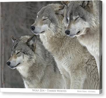 Wolf Canvas Print - Wolf Zen by Rudy Pohl