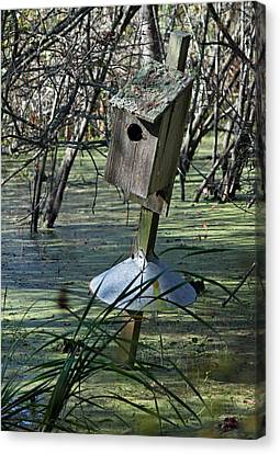 Wood Duck House IIi Canvas Print by Suzanne Gaff