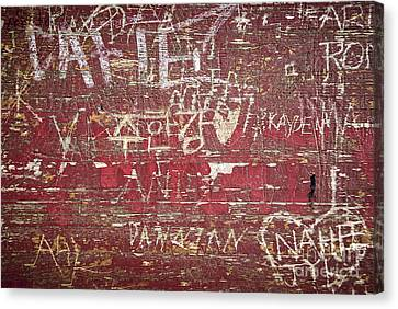 Wood Graffiti Canvas Print by Elena Elisseeva