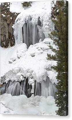 Yellowstone Falls Canvas Print by David Yack