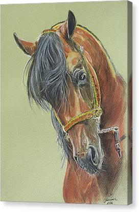 Zimark Canvas Print by Janina  Suuronen