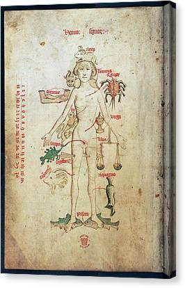 Zodiac Man Canvas Print