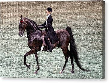 2008 World Champions Canvas Print - 2008-i World Championship Horse Show - Louisville Ky by Thia Stover