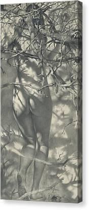 2011 Spring Nimph  Canvas Print by Denis Chernov