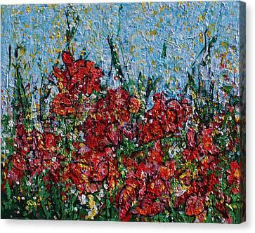 2014 27 Sunlight And Red Cannas Garden In Alexandria Virginia Canvas Print by Alyse Radenovic