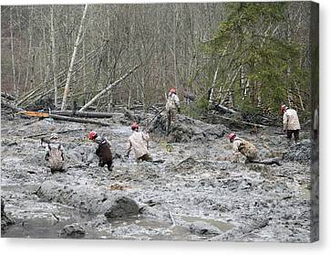 Search And Rescue Canvas Print - 2014 Oso Mudslide by Us Army National Guard