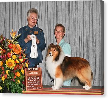 203 4th American Bred Dog Adohr Penelane's Patent Pending Canvas Print by Chris Lynch