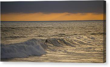 204 Canvas Print by Joey  Maganini