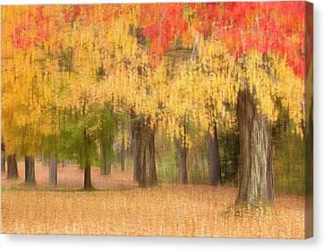 Usa, Maine, Harpswell Canvas Print