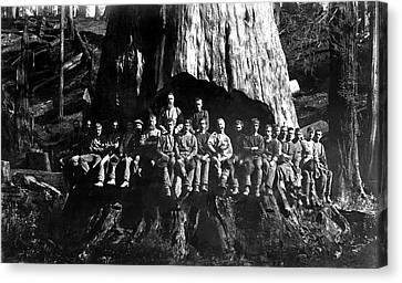 22 Loggers In Redwood Undercut -- 1884 Canvas Print by Daniel Hagerman