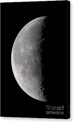 Waning Moon Canvas Print - 23 Day Old Waning Moon by Alan Dyer