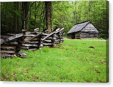 Usa, Tennessee, Great Smoky Mountains Canvas Print