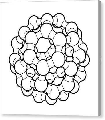 Buckminster Fuller Canvas Print - Buckminsterfullerene Molecule by Russell Kightley