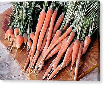 24 Carrot Gem Canvas Print by Elaine Plesser
