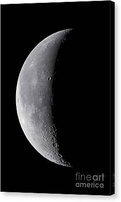 Waning Moon Canvas Print - 24 Day Old Waning Moon by Alan Dyer