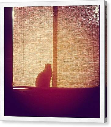 He Found The Light Canvas Print