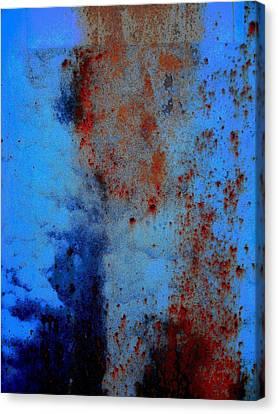 Untitled Canvas Print by Vincent Cherib