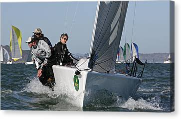 Bay Regatta Canvas Print by Steven Lapkin