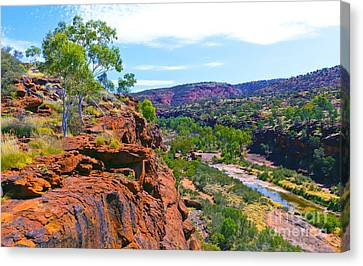 Palm Valley Central Australia  Canvas Print by Bill  Robinson
