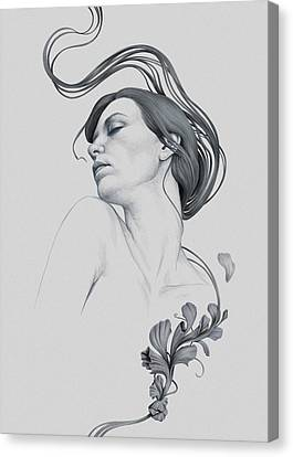 265 Canvas Print by Diego Fernandez