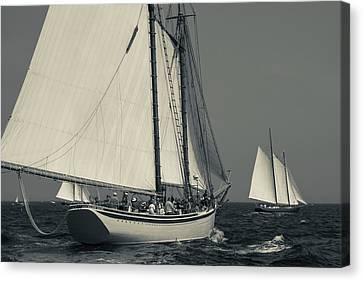 Usa, Massachusetts, Cape Ann Canvas Print