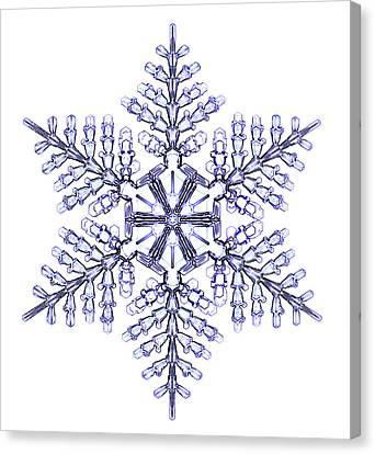 Stellar Canvas Print - Snowflake by Kenneth Libbrecht
