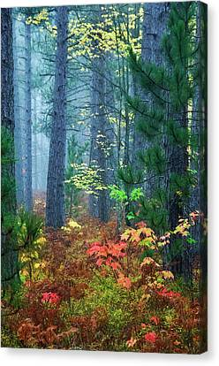 Usa, Michigan, Upper Peninsula Canvas Print by Jaynes Gallery