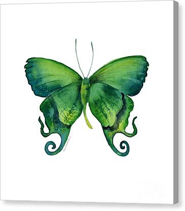 29 Arcas Butterfly Canvas Print by Amy Kirkpatrick