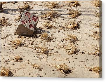 Drought Canvas Print by Ashley Cooper