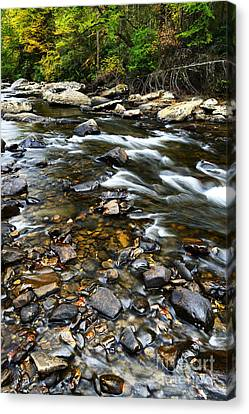 Williams River Canvas Print - Williams River Autumn by Thomas R Fletcher