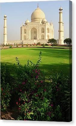 Asia, India, Uttar Pradesh, Agra Canvas Print by Steve Roxbury