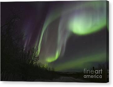 Aurora Borealis By Fish Lake Canvas Print by Joseph Bradley