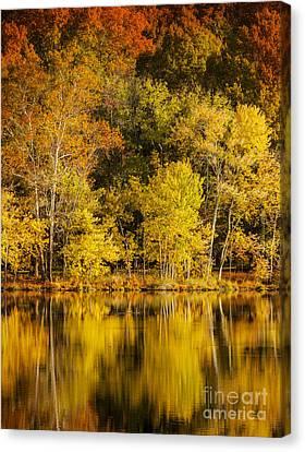 Radnor Canvas Print - Autumn Color by Brian Jannsen
