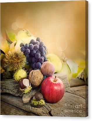 Autumn Fruit Canvas Print by Mythja  Photography