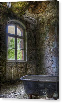 Bath Time Canvas Print by Nathan Wright