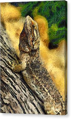 Bearded Dragon Canvas Print by George Atsametakis
