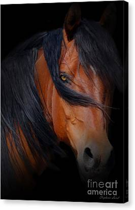 Bay Horse Canvas Print - Black Magic by Stephanie Laird