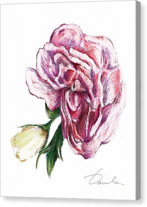 Blossom Canvas Print by Danuta Bennett