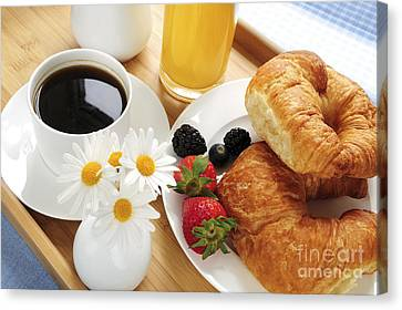 Breakfast  Canvas Print by Elena Elisseeva