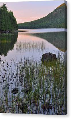 Bubble Pond Dawn Reflections Canvas Print by Stephen  Vecchiotti