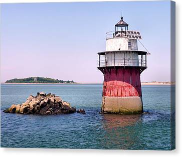 Bug Light Canvas Print by Janice Drew