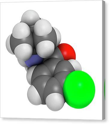 Bupropion Antidepressant Drug Canvas Print